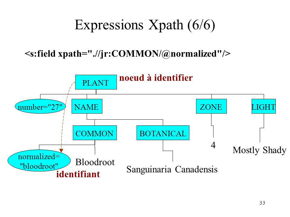 Expressions Xpath (6/6) <s:field xpath= .//jr:COMMON/@normalized /> noeud à identifier. PLANT. ...