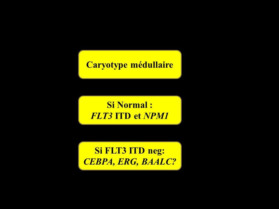 Caryotype médullaire Si Normal : FLT3 ITD et NPM1 Si FLT3 ITD neg: CEBPA, ERG, BAALC