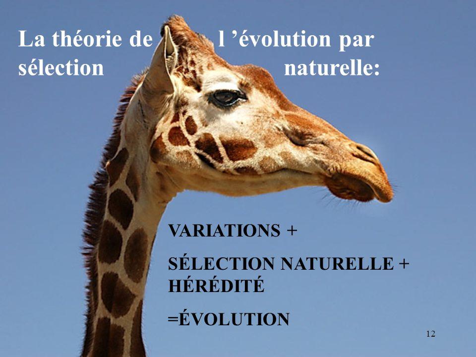 La théorie de l 'évolution par sélection naturelle:
