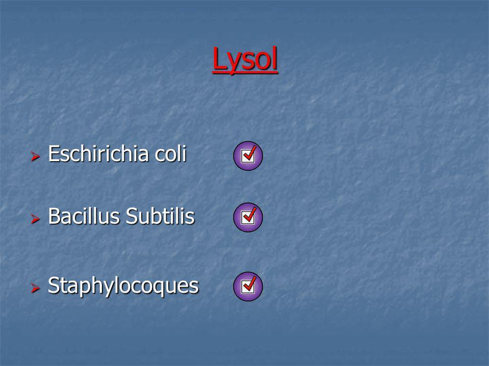 Lysol Eschirichia coli Bacillus Subtilis Staphylocoques