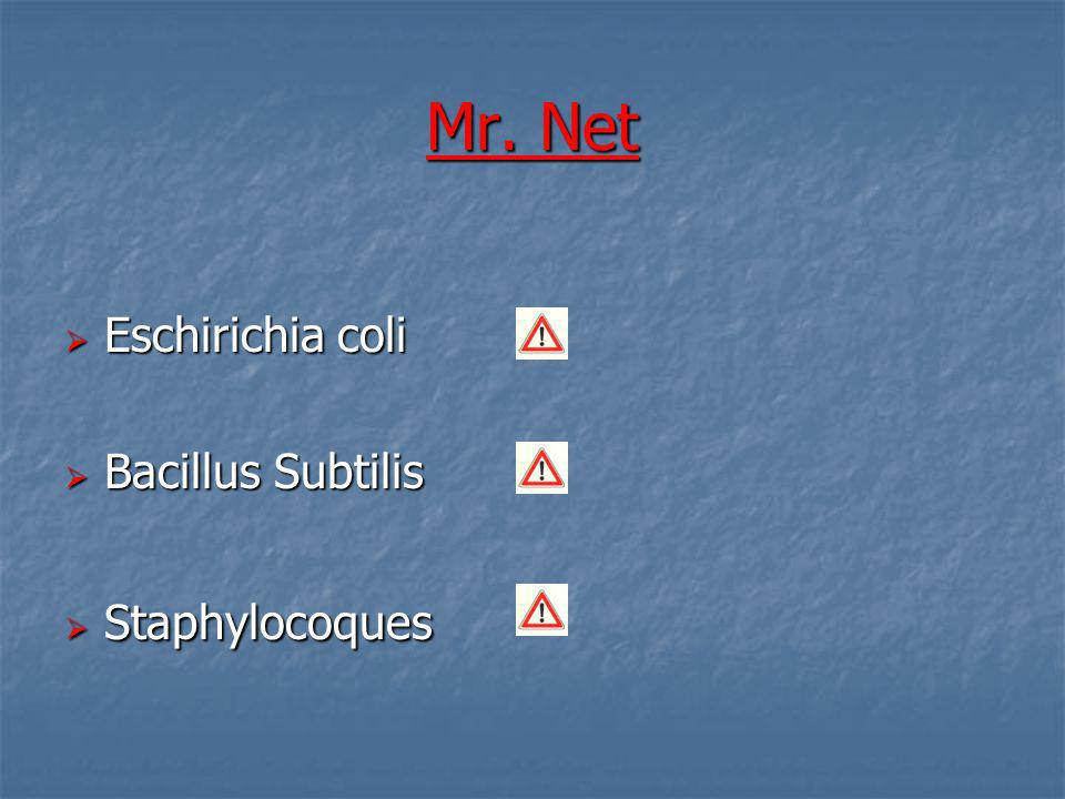 Mr. Net Eschirichia coli Bacillus Subtilis Staphylocoques