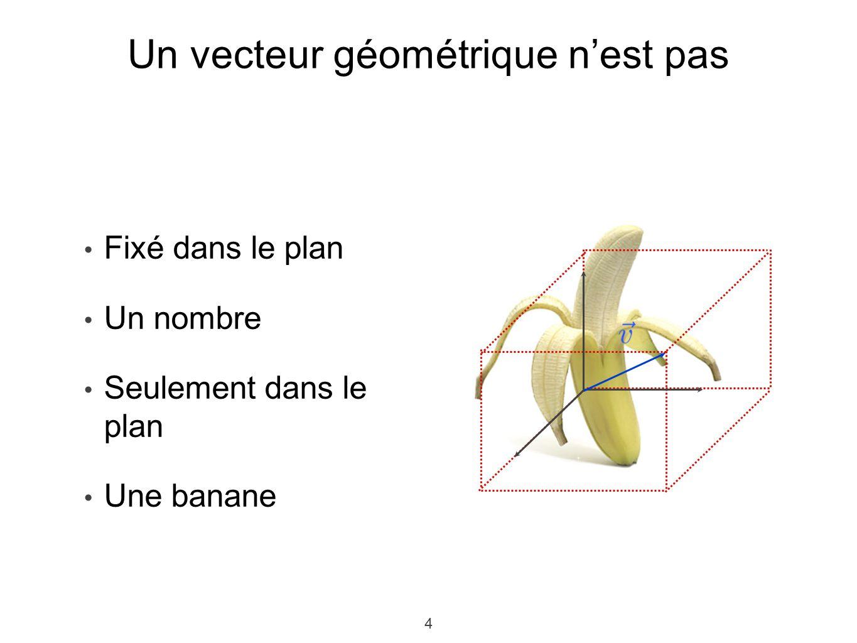 Un vecteur géométrique n'est pas