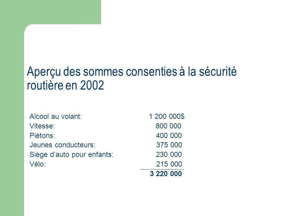 Aperçu des sommes consenties à la sécurité routière en 2002