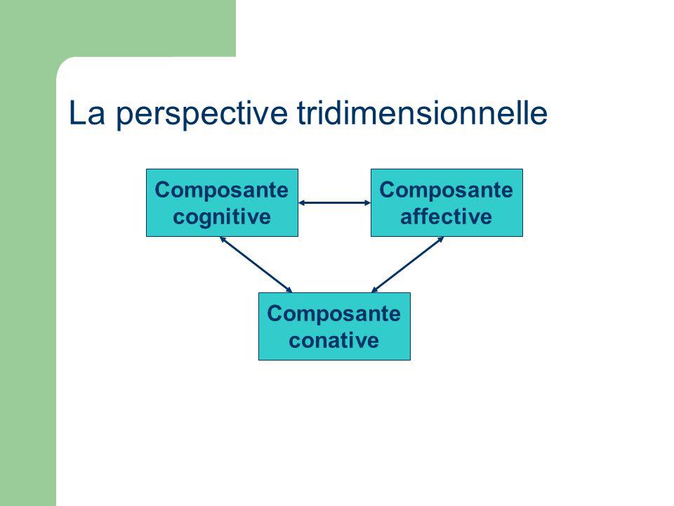 La perspective tridimensionnelle