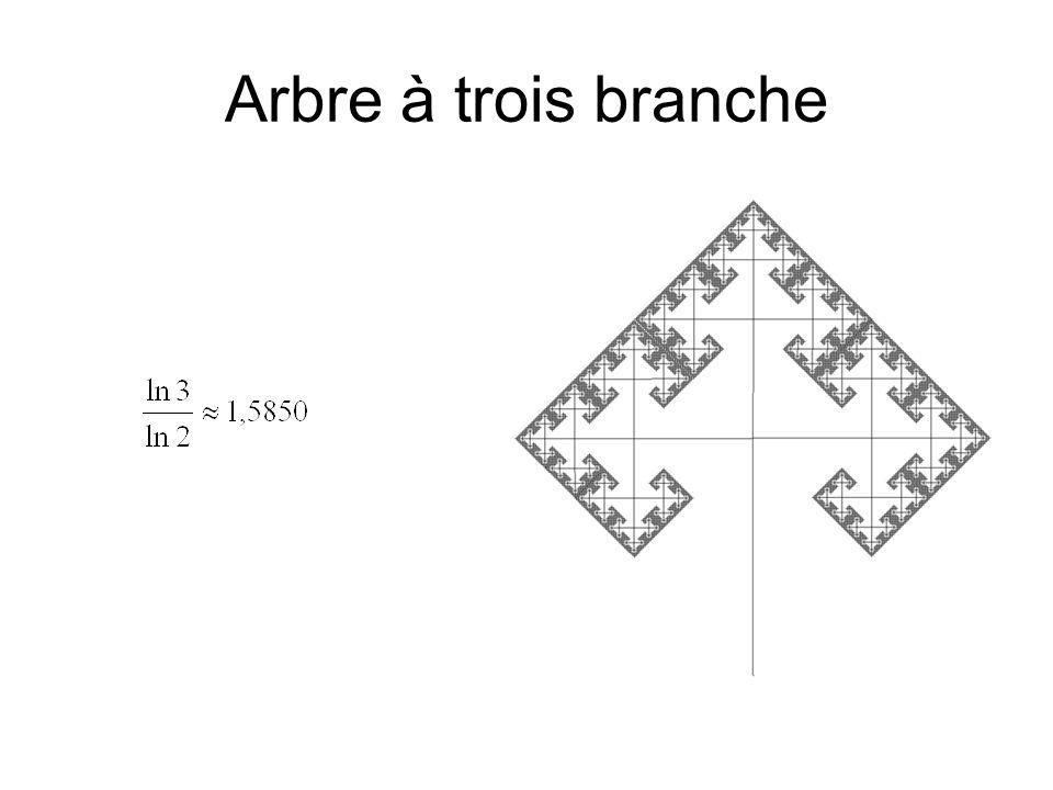Arbre à trois branche