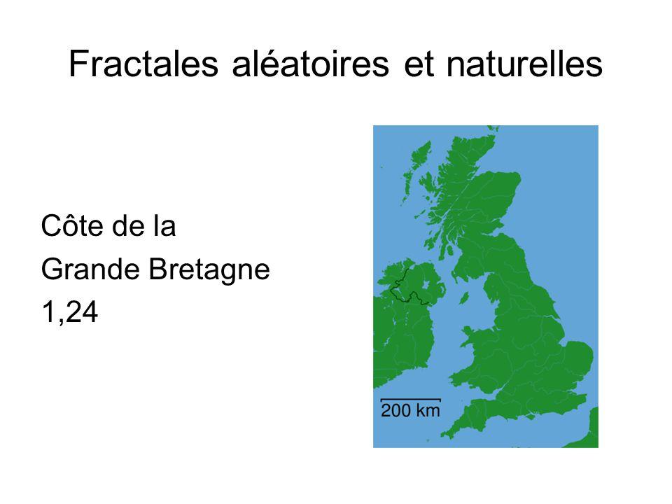 Fractales aléatoires et naturelles