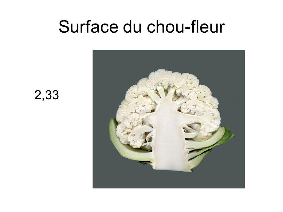 Surface du chou-fleur 2,33
