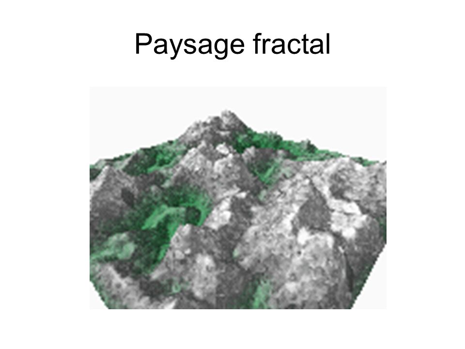 Paysage fractal