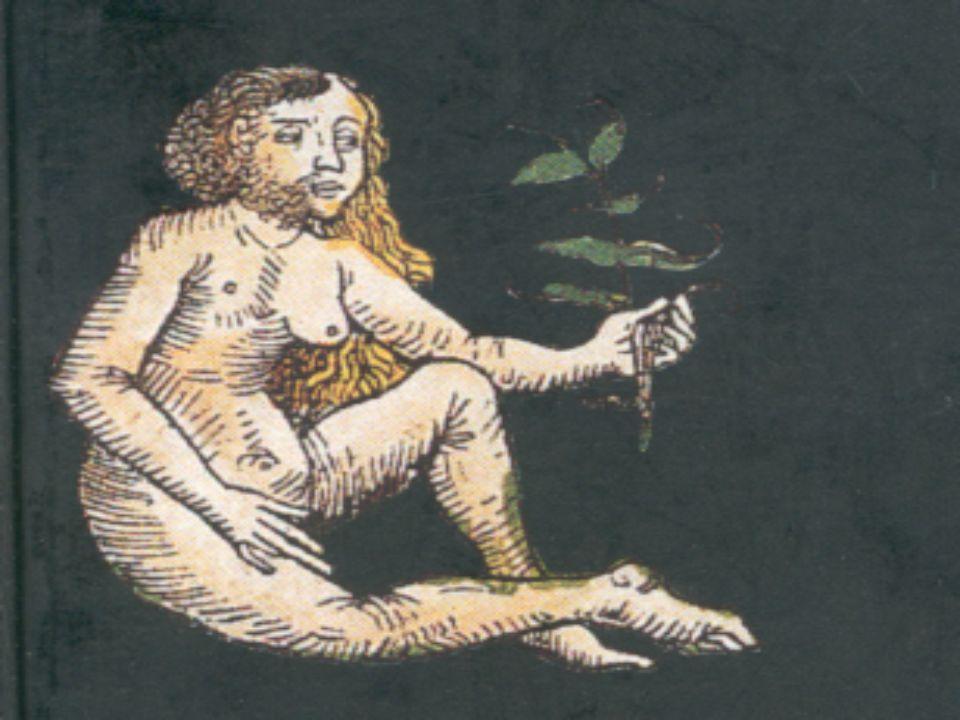 Hermaphrodite, Image de l'autre