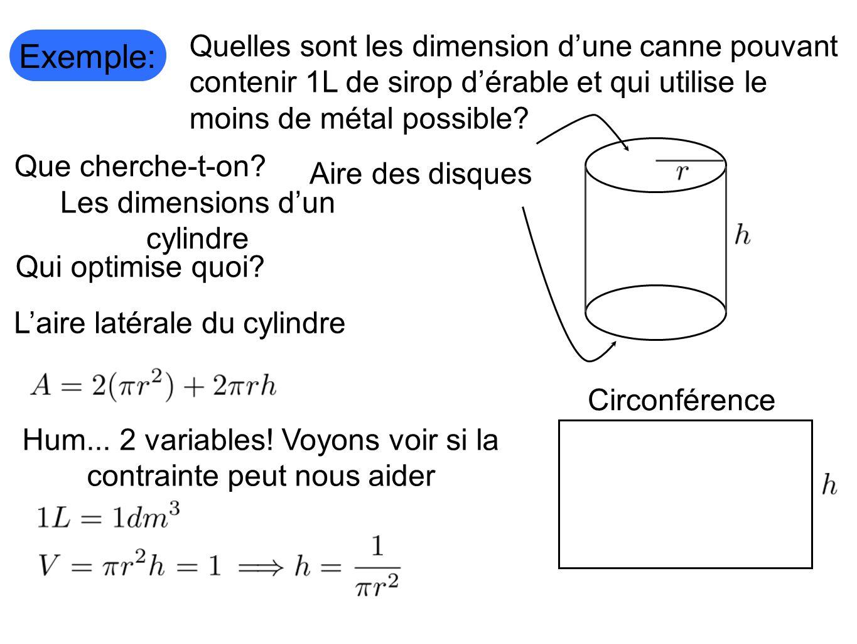 Exemple: Quelles sont les dimension d'une canne pouvant contenir 1L de sirop d'érable et qui utilise le moins de métal possible