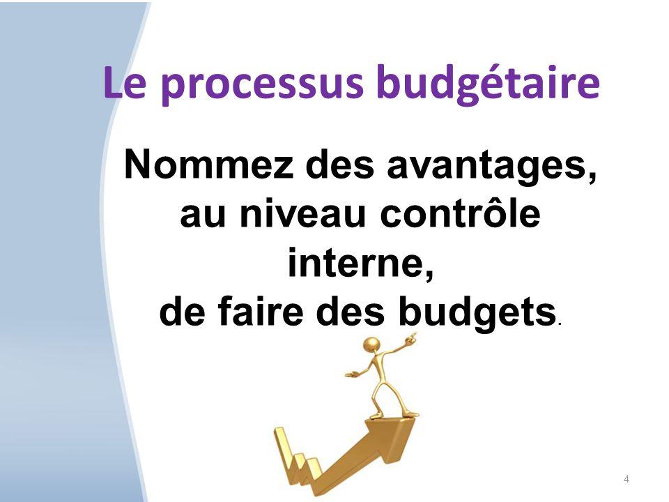 Le processus budgétaire au niveau contrôle interne,