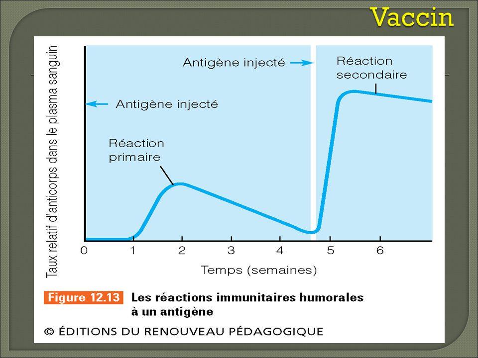 Vaccin Importance de vaccin Contre la rage Tech en environnement et travail avec des raton laveur.