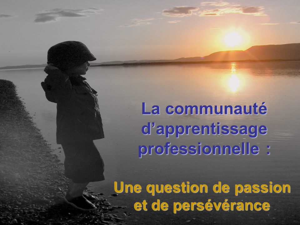 La communauté d'apprentissage professionnelle :