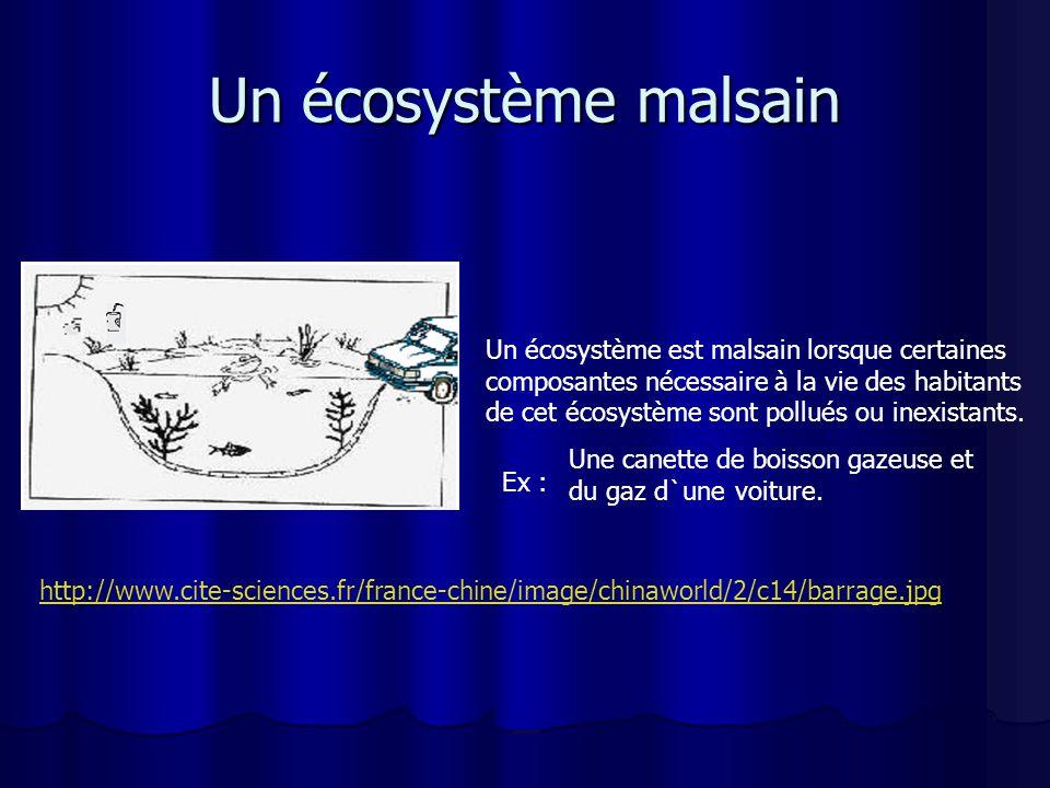 Un écosystème malsain