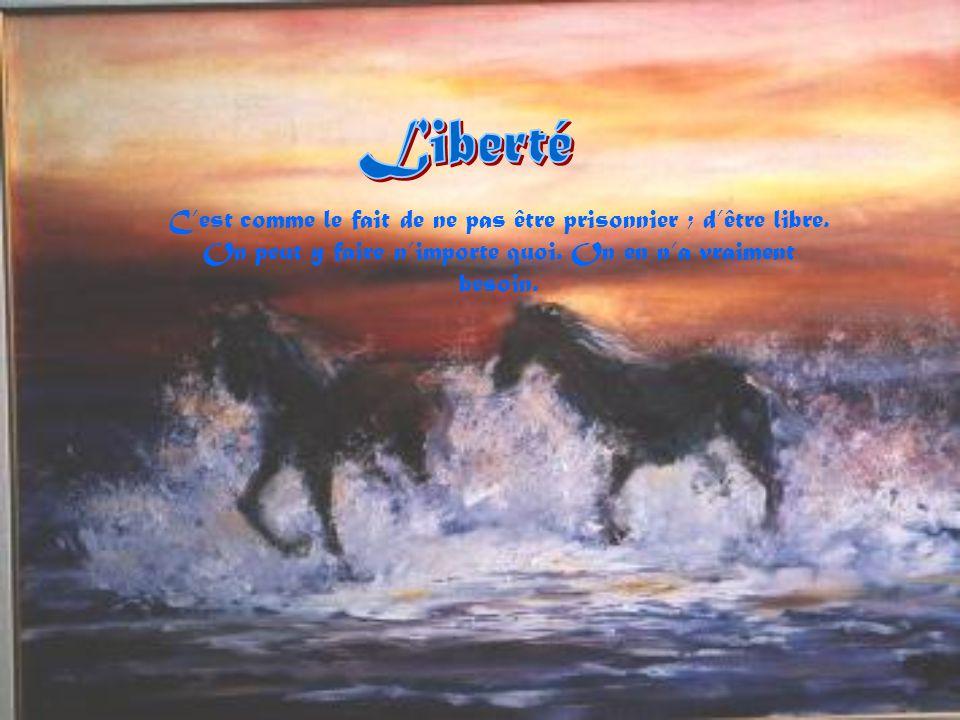 Liberté C'est comme le fait de ne pas être prisonnier ; d'être libre.