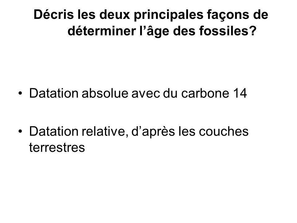 Décris les deux principales façons de déterminer l'âge des fossiles