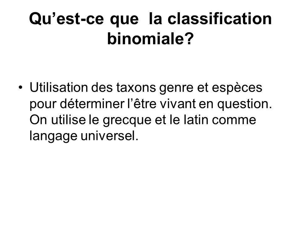 Qu'est-ce que la classification binomiale