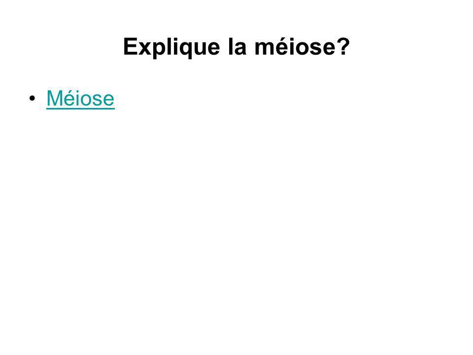 Explique la méiose Méiose