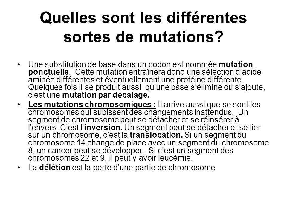 Quelles sont les différentes sortes de mutations
