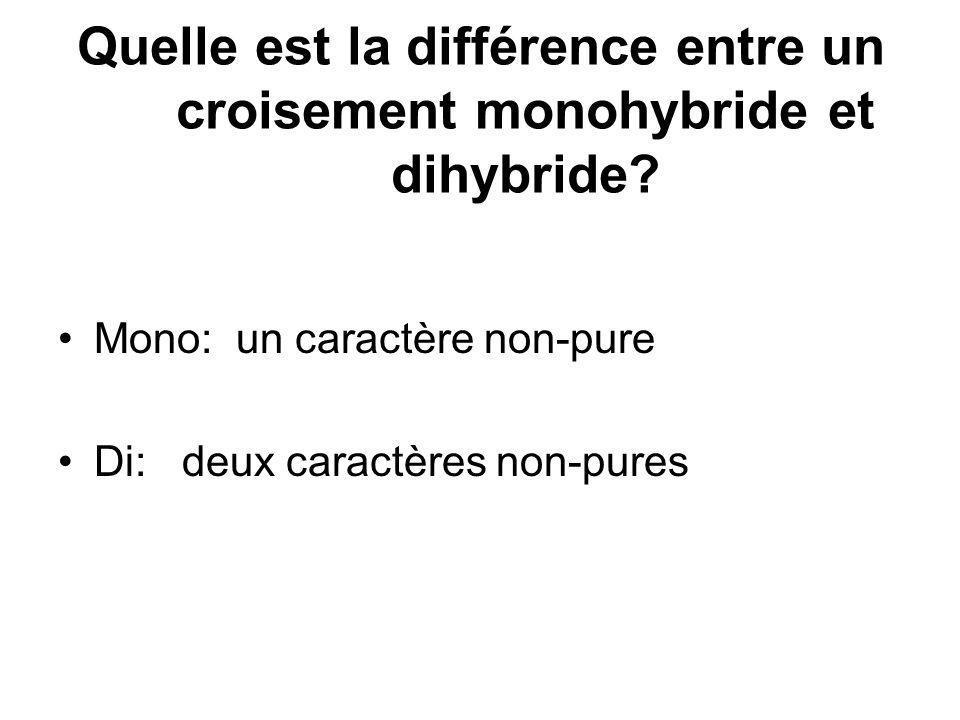 Quelle est la différence entre un croisement monohybride et dihybride