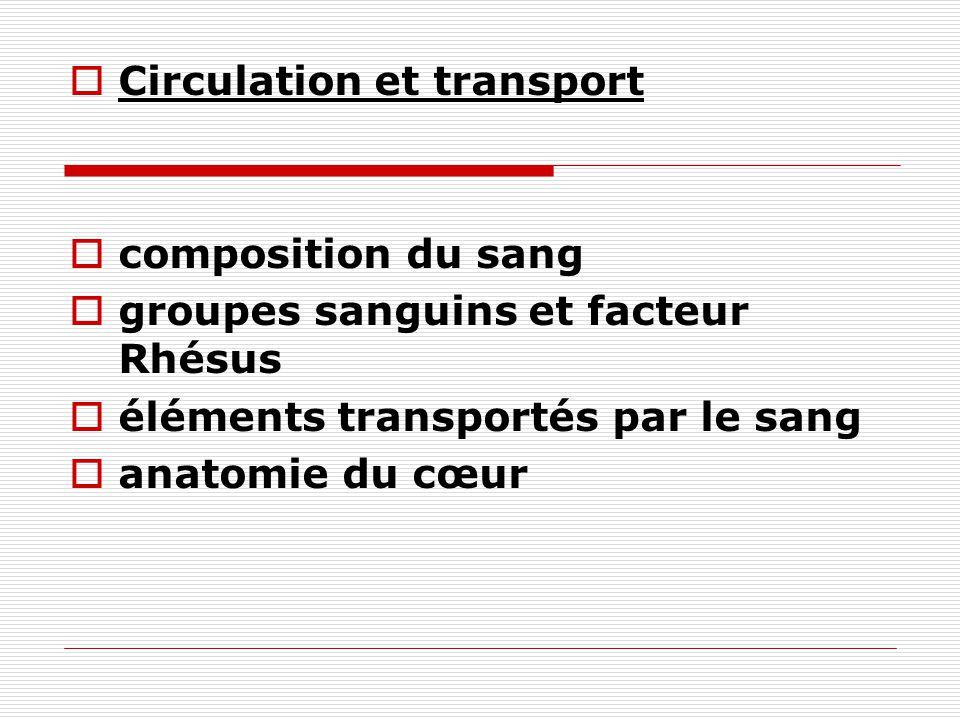 Circulation et transport