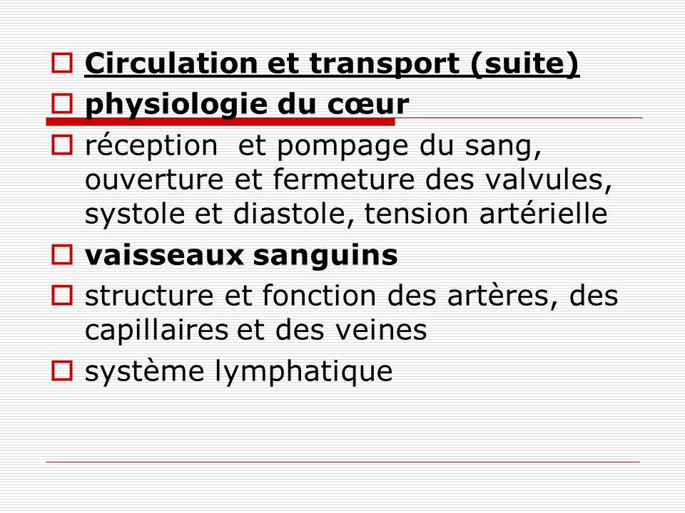 Circulation et transport (suite)