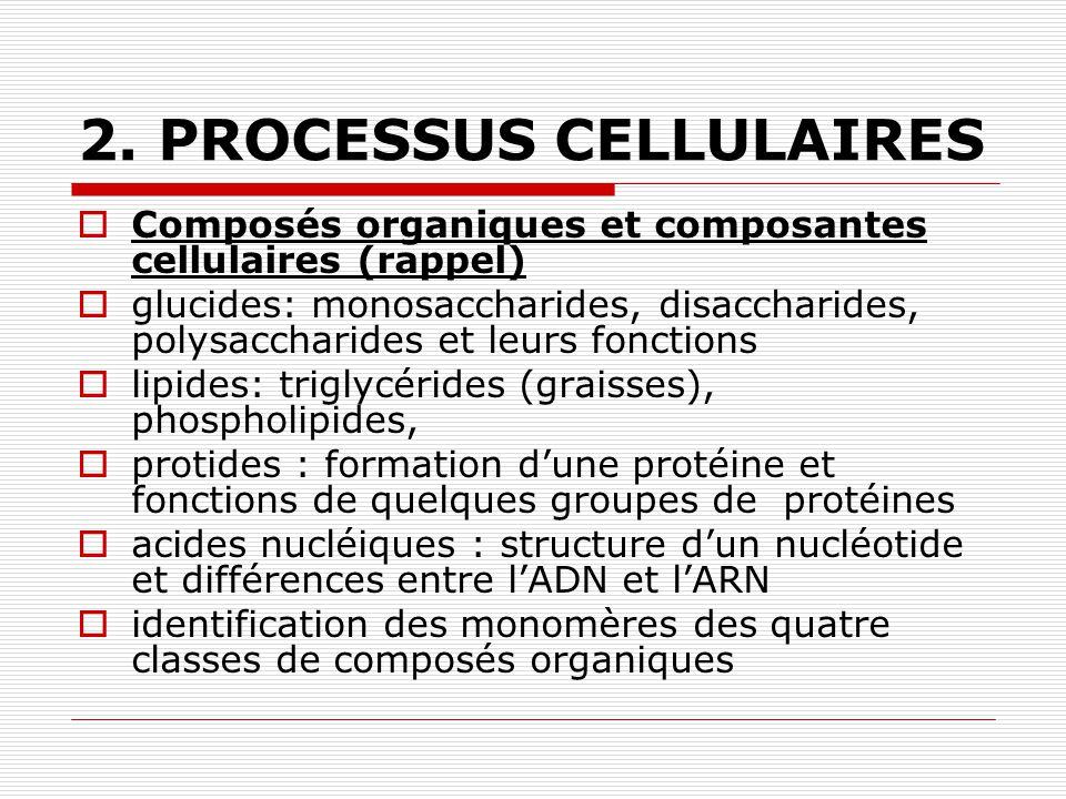 2. PROCESSUS CELLULAIRES