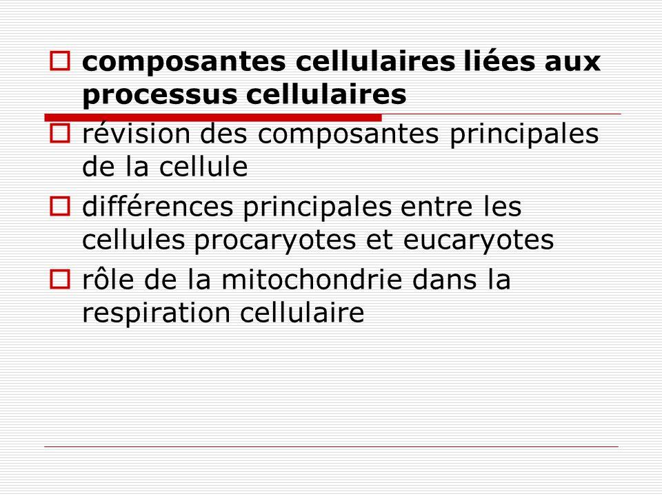 composantes cellulaires liées aux processus cellulaires