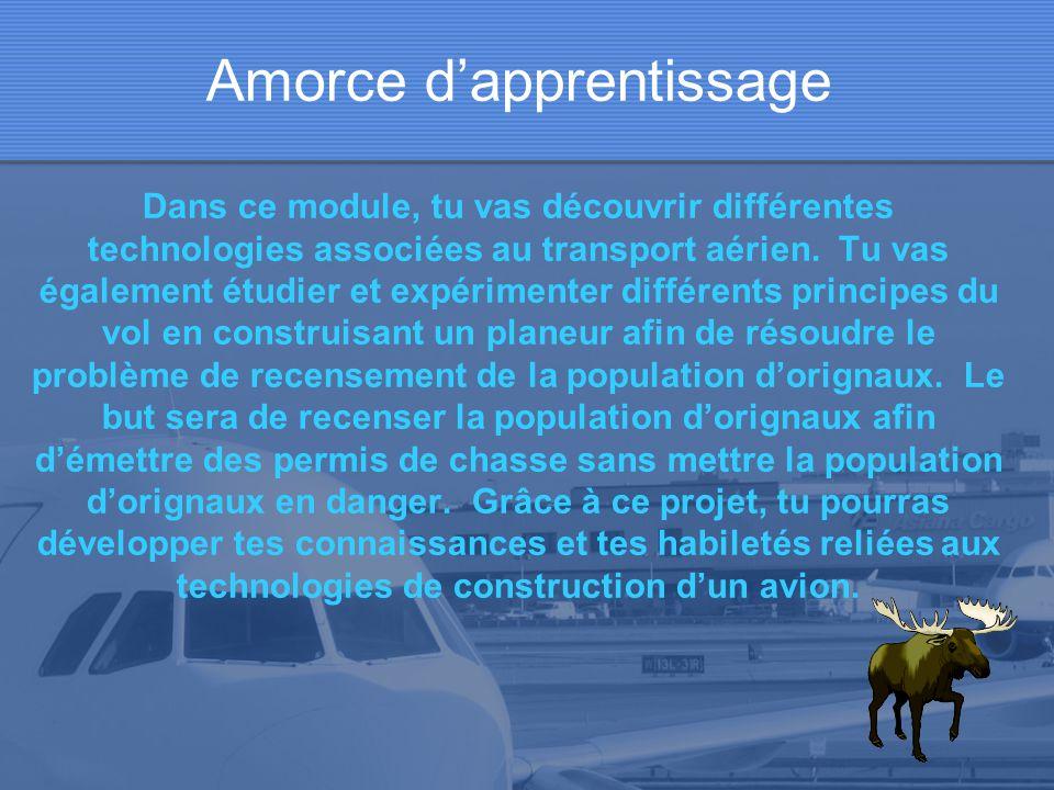 Amorce d'apprentissage Dans ce module, tu vas découvrir différentes technologies associées au transport aérien.