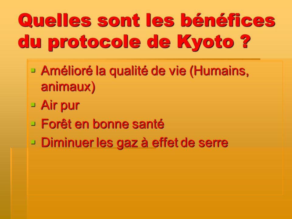 Quelles sont les bénéfices du protocole de Kyoto