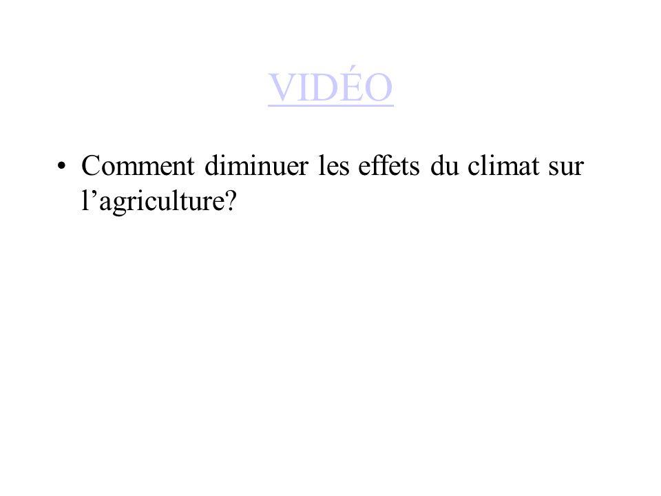 VIDÉO Comment diminuer les effets du climat sur l'agriculture