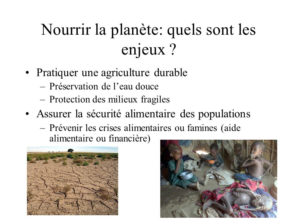 Nourrir la planète: quels sont les enjeux