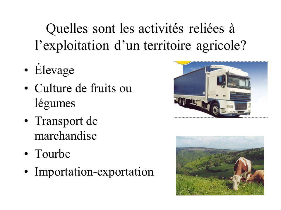 Quelles sont les activités reliées à l'exploitation d'un territoire agricole