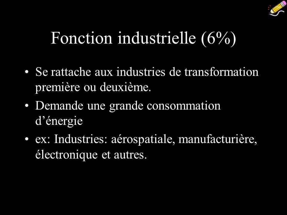 Fonction industrielle (6%)