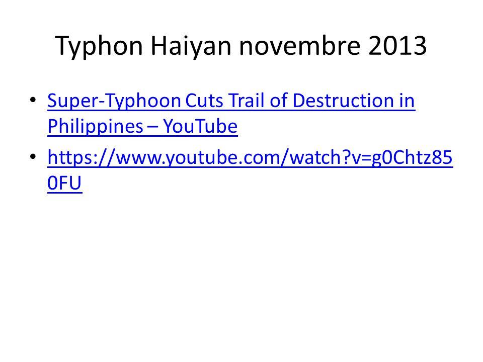 Typhon Haiyan novembre 2013