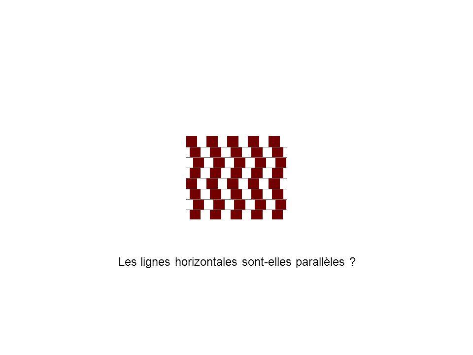 Les lignes horizontales sont-elles parallèles
