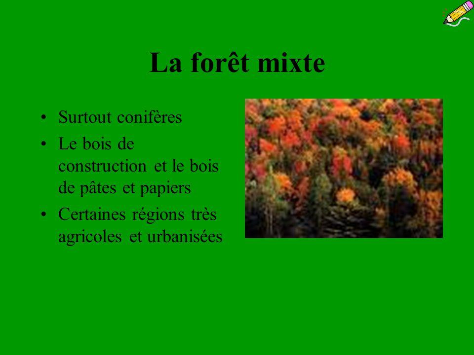 La forêt mixte Surtout conifères