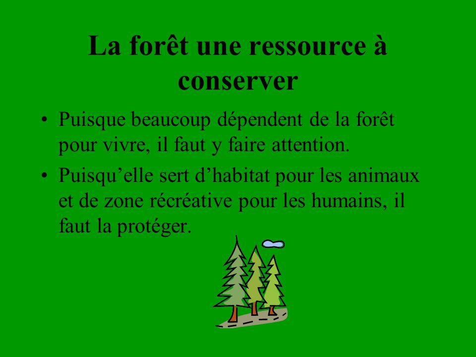 La forêt une ressource à conserver