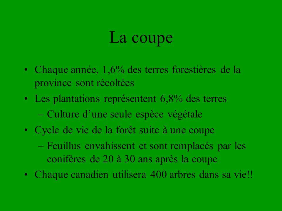 La coupe Chaque année, 1,6% des terres forestières de la province sont récoltées. Les plantations représentent 6,8% des terres.