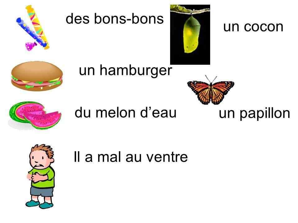 des bons-bons un cocon un hamburger du melon d'eau un papillon Il a mal au ventre