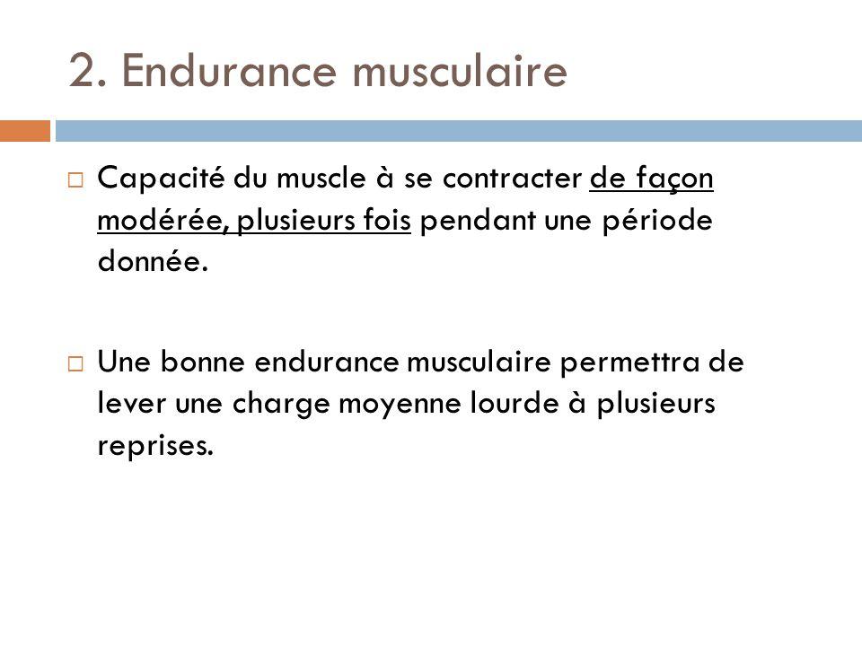 2. Endurance musculaire Capacité du muscle à se contracter de façon modérée, plusieurs fois pendant une période donnée.