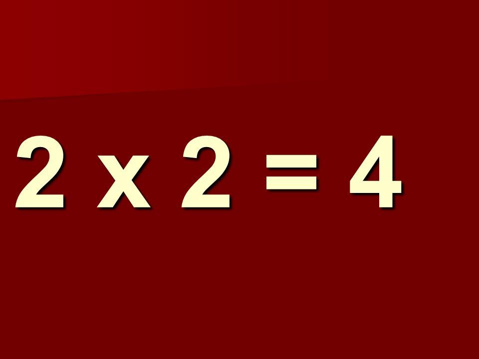 2 x 2 = 4 162