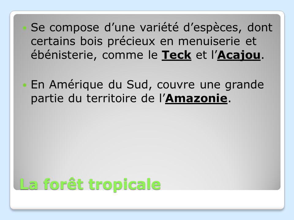 Se compose d'une variété d'espèces, dont certains bois précieux en menuiserie et ébénisterie, comme le Teck et l'Acajou.
