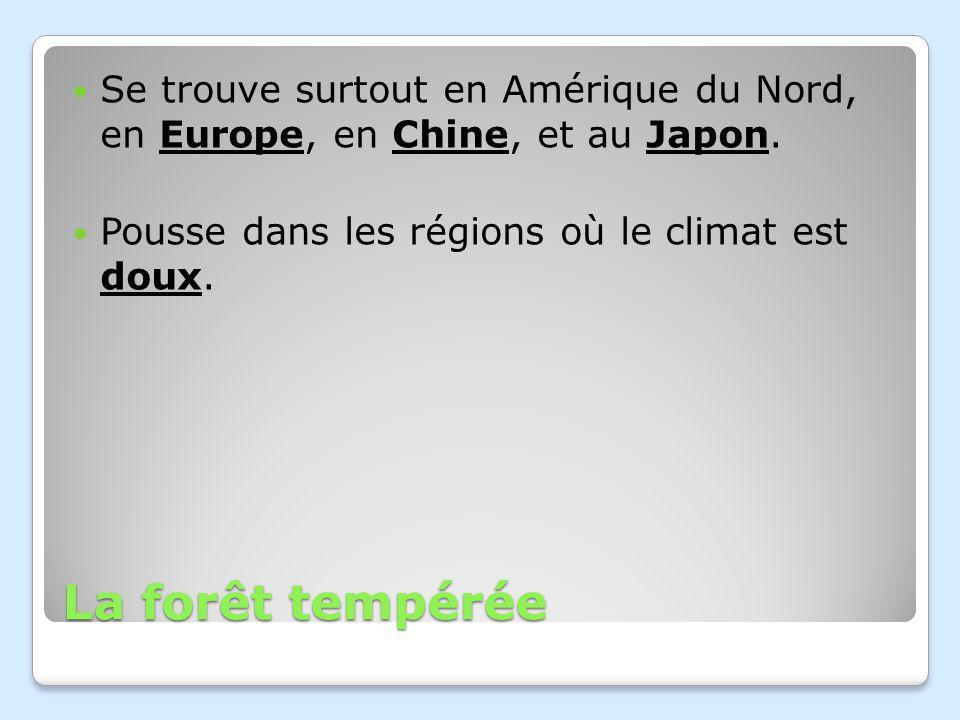 Se trouve surtout en Amérique du Nord, en Europe, en Chine, et au Japon.