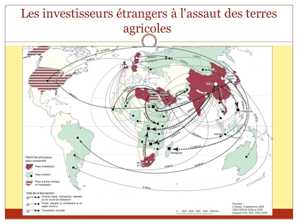 Les investisseurs étrangers à l assaut des terres agricoles