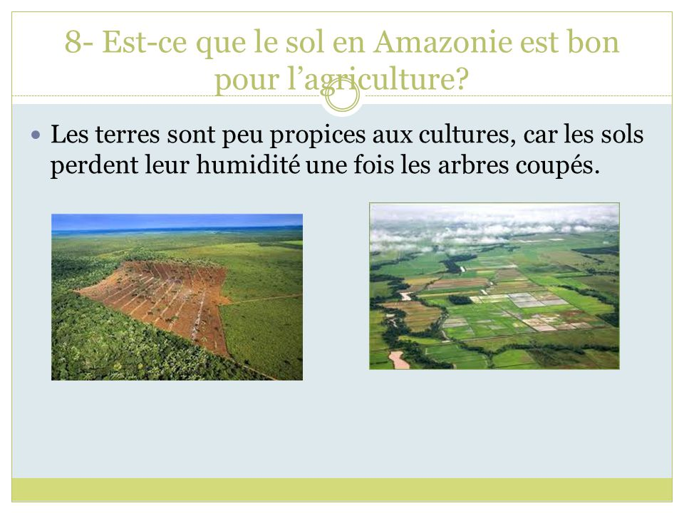 8- Est-ce que le sol en Amazonie est bon pour l'agriculture