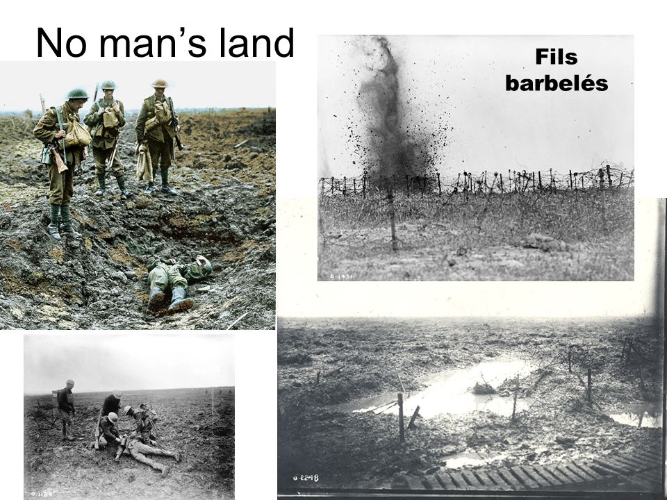 No man's land Fils barbelés