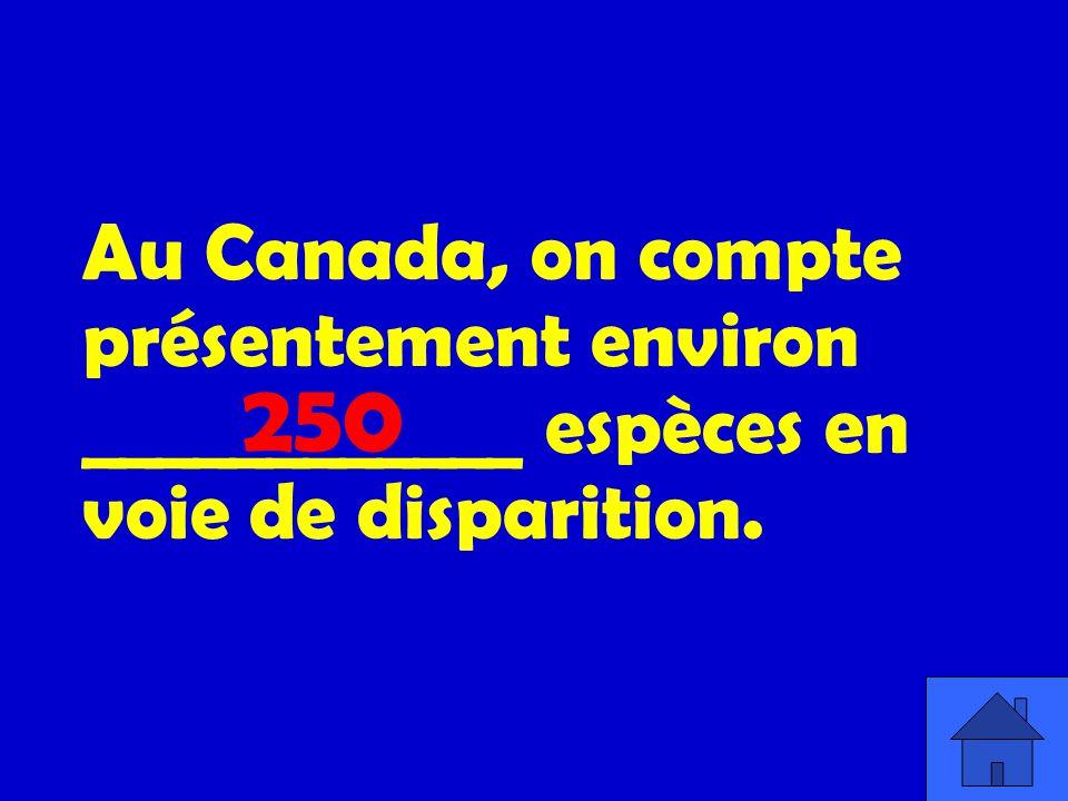 Au Canada, on compte présentement environ ____________ espèces en voie de disparition.