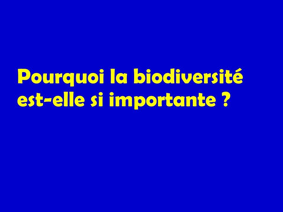 Pourquoi la biodiversité est-elle si importante