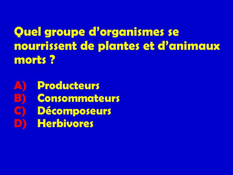 Quel groupe d'organismes se nourrissent de plantes et d'animaux morts